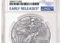 NGC 2019-W Silver American Eagle Holder