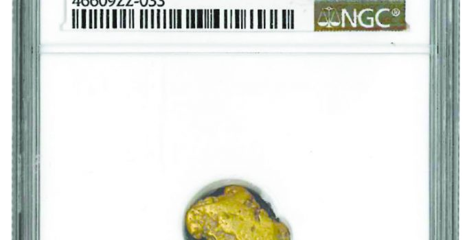 SSCA Gold Rush nugget